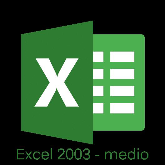 Curso de Excel 2003 medio