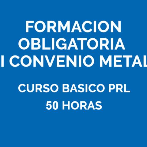 Formación obligatoria del metal - Curso básico de Prevención 50h